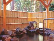 源泉かけ流し露天風呂付き特別室(一里野高原ホテル ろあん)