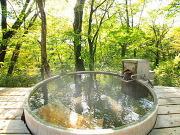 全室離れ&源泉掛け流しの露天風呂付(温泉山荘 だいこんの花)