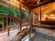 源泉100%掛け流しの離れ露天風呂付客室(割烹旅館 湯の花荘)